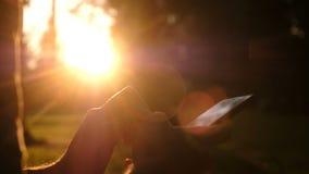 Hombre que usa Smartphone Tiro ascendente cercano de las manos del hombre con el móvil en puesta del sol Relájese, concepto de la almacen de video