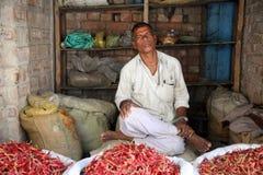 Hombre que vende las pimientas Imagenes de archivo
