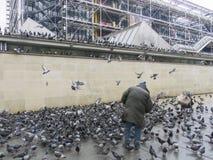 Hombre rodeado por las palomas, París, Francia, 2012 imagenes de archivo