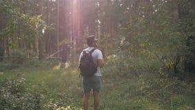Hombre sano activo que camina en bosque hermoso con las gafas de sol Concepto del healthness del anh de la actividad del deporte almacen de metraje de vídeo