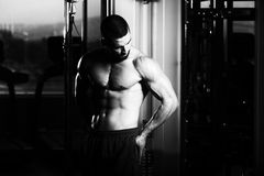 Hombre sano con seis paquetes Imagenes de archivo