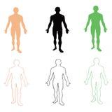 Hombre. Silueta de la persona. Ilustración del vector libre illustration