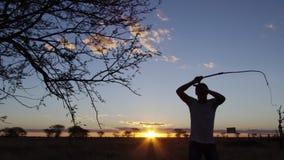 Hombre silueteado que azota la rama del ` s del árbol almacen de video