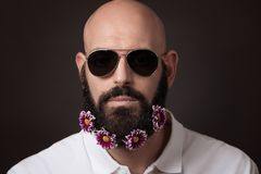Hombre sin afeitar con la barba y bigote con las flores y las gafas de sol del crisantemo en fondo oscuro Imagen de archivo libre de regalías