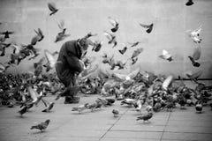 Hombre sin hogar del pájaro foto de archivo libre de regalías