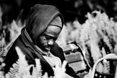 Hombre sin hogar que se sienta en un banco de parque que toma una siesta Fotos de archivo libres de regalías