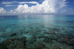 Hombre Snorkling en el océano de Caribean Fotografía de archivo