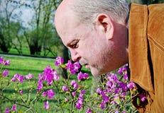 Hombre snuffing una flor. imagen de archivo libre de regalías