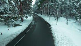 Hombre solitario que camina a través de la cantidad de la antena del bosque del invierno metrajes