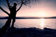 Hombre solitario que mira puesta del sol colorida en la orilla del lago del otoño Árbol de abedul del bramido del soporte del hom Fotos de archivo libres de regalías