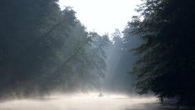 Hombre solo con una paleta en la natación del barco en un río tranquilo en niebla del amanecer Los primeros rayos del sol de la m metrajes