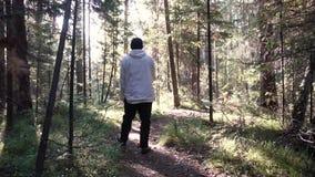 Hombre solo joven que camina profundamente en bosque entre la vegetación y los arbustos densos cantidad Opinión el hombre de la p metrajes