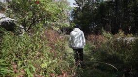 Hombre solo joven que camina profundamente en bosque entre la vegetación y los arbustos densos cantidad Opinión el hombre de la p almacen de metraje de vídeo