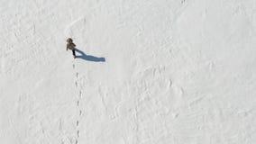 Hombre solo que camina en el desierto ártico nevoso Visión desde arriba Soledad y superación metrajes