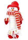 Hombre sonriente de la nieve Foto de archivo libre de regalías