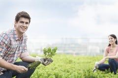 Hombre sonriente joven que sostiene la planta y que cultiva un huerto con la mujer joven en un jardín del top del tejado Fotos de archivo