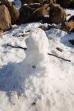 Hombre Tasmania de la nieve Imagen de archivo
