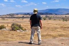 Hombre trasero mirando el horizonte Fotos de archivo