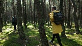 Hombre trasero y mujer de la visión que caminan en bosque del otoño