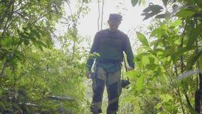 Hombre turístico que camina en alza sucia del verano del rato de la trayectoria de bosque Hombre que viaja que camina en el bosqu metrajes