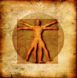Hombre vitruvian de Da Vinci stock de ilustración