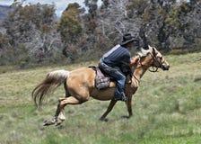 Hombre y caballo Imagenes de archivo