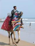 Hombre y camello indios Imagen de archivo