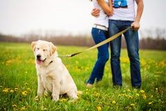Hombre y mujer con el perro Foto de archivo libre de regalías