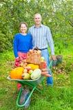 Hombre y mujer con la cosecha Imagen de archivo libre de regalías
