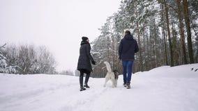 Hombre y mujer de amor que caminan con el husky siberiano en bosque del invierno que sonríe y que mira uno a cámara lenta feliz almacen de video
