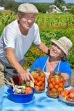 Hombre y mujer en el jardín Fotos de archivo