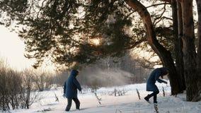Hombre y mujer que juegan bolas de nieve en la puesta del sol del bosque del invierno en el bosque del invierno metrajes