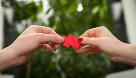 Hombre y mujer que llevan a cabo corazones Fotos de archivo libres de regalías