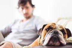 Hombre y perro Foto de archivo