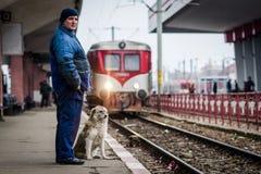 Hombre y perro fotografía de archivo