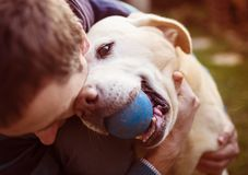 Hombre y perro fotos de archivo