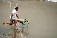 Hombre y perro en la playa Imagen de archivo
