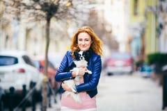 Hombre y perro sujetos mujer caucásica pelirroja joven con las pecas en perro lanudo blanco y negro de la raza de la chihuahua de foto de archivo libre de regalías