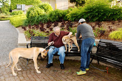 Hombres con el perro Fotos de archivo libres de regalías