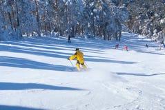 Hombres de la mujer del invierno del esquí que esquían cuesta abajo, Imagen de archivo libre de regalías