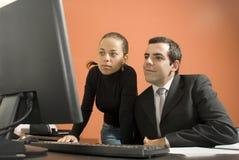 Hombres de negocios que miran el ordenador - horizontal fotografía de archivo libre de regalías