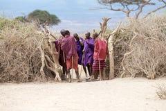 Hombres del Masai Imagen de archivo libre de regalías