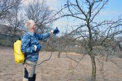 Hombres jovenes hermosos Un granjero de sexo masculino sin las aguas del equipo protector personal envenena árboles frutales imagen de archivo libre de regalías