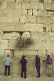 Hombres judíos que ruegan en la pared que se lamenta sagrada, pared occidental, Jer Fotografía de archivo