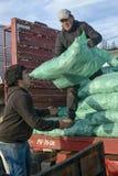 Hombres que descargan los sacos con forraje de un camión Fotografía de archivo libre de regalías