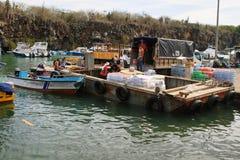 Hombres que descargan productos en Puerto Ayora, Santa Cruz Fotografía de archivo
