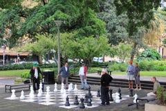 Hombres que juegan a ajedrez en parque Foto de archivo libre de regalías