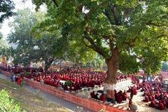 Hombres que ruegan en un parque cerca del templo budista Fotos de archivo