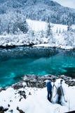 Hombres que toman las fotos en el zelenci hermoso en paisaje del invierno, Kranjska Gora, Eslovenia del lago del verde esmeralda Foto de archivo libre de regalías
