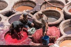 Hombres que trabajan en las curtidurías Fès Marruecos Imagenes de archivo